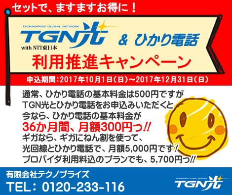 TGN光&ひかり電話利用推進キャンペーン