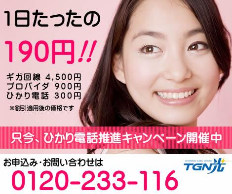 ギガ回線とプロバイダ、ひかり電話がセットで1日たったの190円っ♪